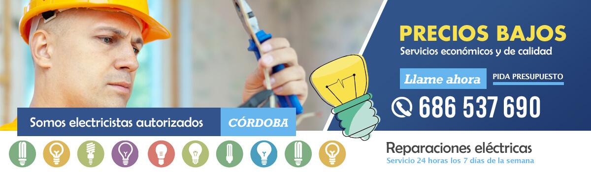 Servicios económicos de reparación de averías eléctricas en Córdoba